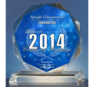 Chiropractic Cranberry Township PA 2014 award